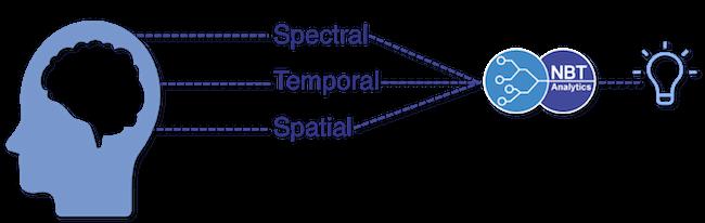 EEG analysis for clinical trials   NBT Analytics